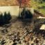 Gartenbau-3
